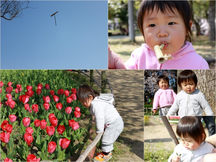 入園、花見4