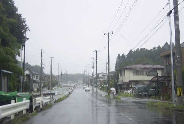 keyaki-001914s.jpg