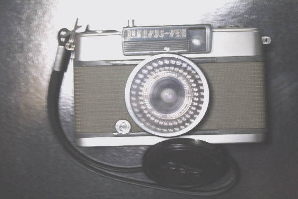 keyaki-001930s.jpg