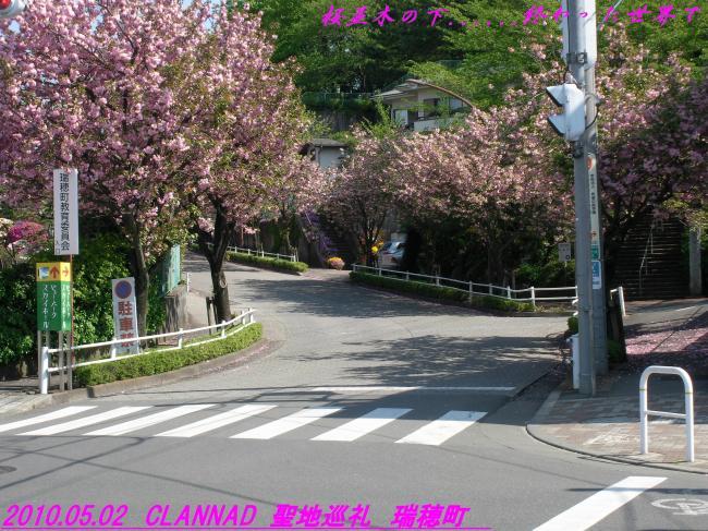 RIMG28200_convert_20100505133007.jpg