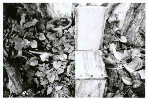 無題-スキャンされた画像-05