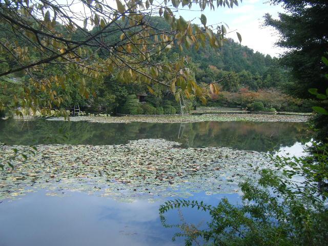 2010_1031京都第2弾0065