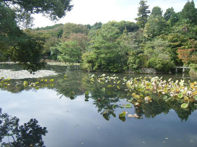 2010_1031京都第2弾0056