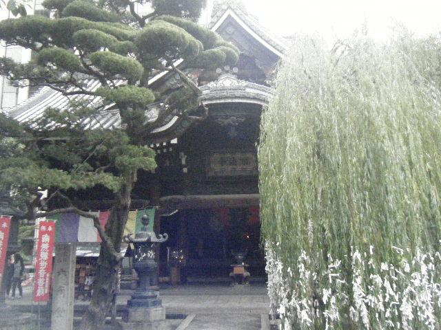 2010_1031京都第2弾0095