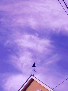 071006_0715~001 風見鳥