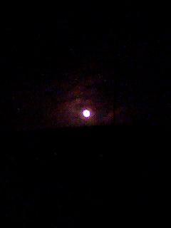 100228_1831~001 癒しの月