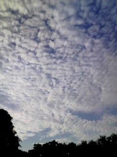100726_0548~001 雲くも雲