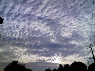 100726_0555~001 雲海