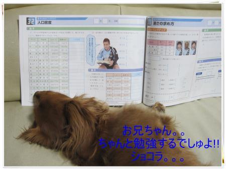 IMG_3214_convert_20100413215931.jpg