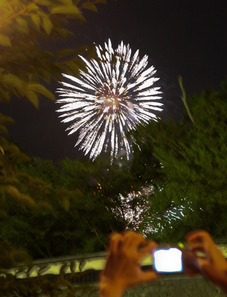 花火の写真を写す人