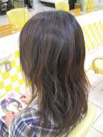 m3d 2009.2.12 009