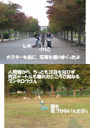 NOV3_6.jpg