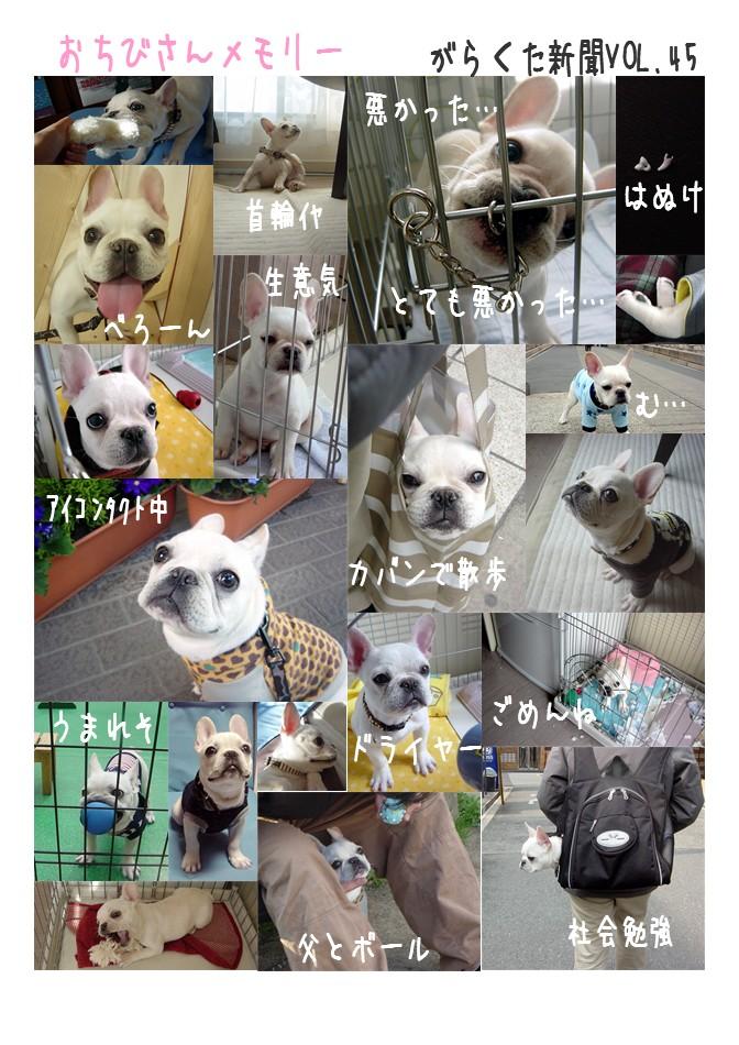 shinbun45_1