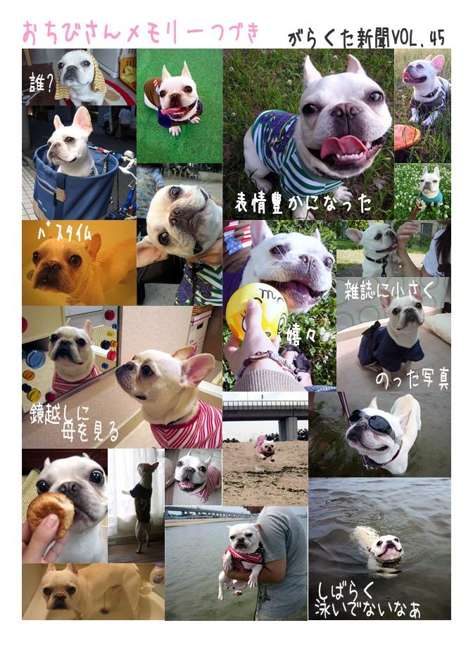shinbun45_2