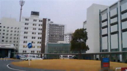 20090125104418.jpg
