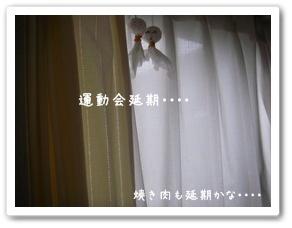 035_20090529220726.jpg