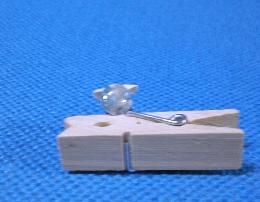 CIMG0590_20100130214730.jpg