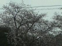 100324_1718~01001[1]