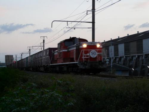 P1040543a.jpg