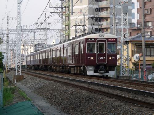 P1050816a.jpg