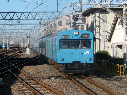 P1060818a.jpg