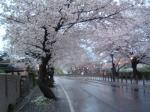 inuyama070413.jpg