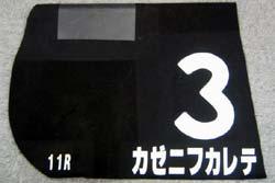20050907-hanshin7.jpg