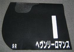 20060219-hanshin02.jpg