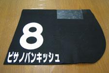 20060318-nakayama6.jpg