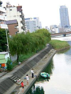 P1960340.jpg