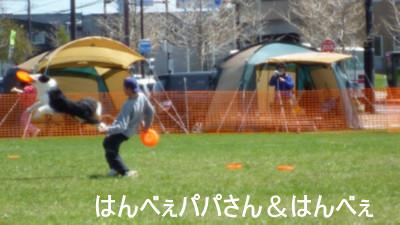 P1040691.jpg