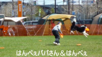 P1040698.jpg