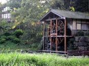 20091004泉の森04