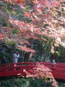 20091123小國神社03