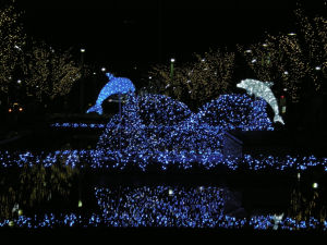 20091123常盤公園01