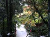 20091123油山寺07