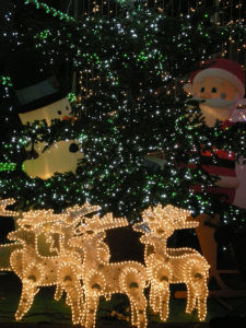 20091217玉川学園イルミ