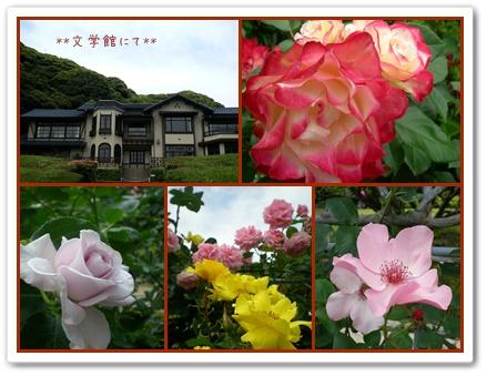 F20100606鎌倉散策05