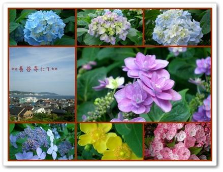 F20100606鎌倉散策03