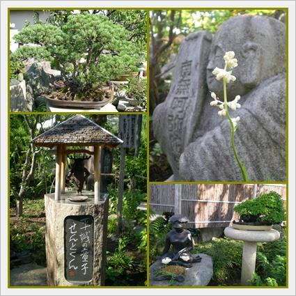 F20100911常泉寺03