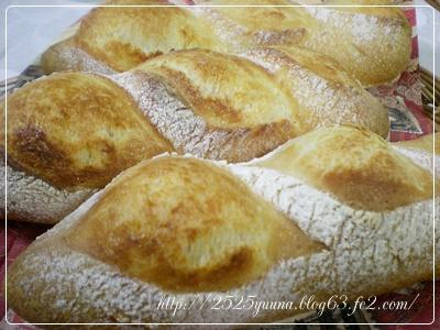 F20110131フランスパン01