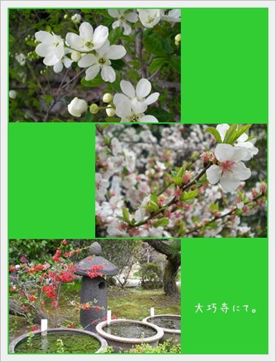 F20110403鎌倉03