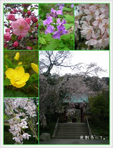 F20110403鎌倉01