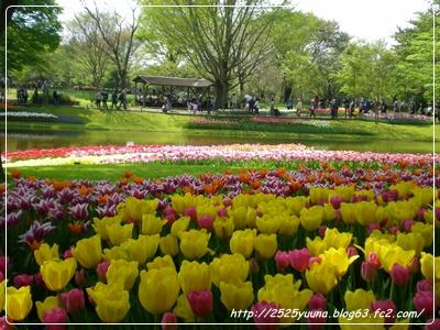 F20110424昭和記念公園06