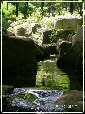 F20110514戸山公園03