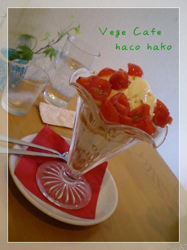 F20110327hacohako01