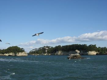 遊覧船で松島めぐり