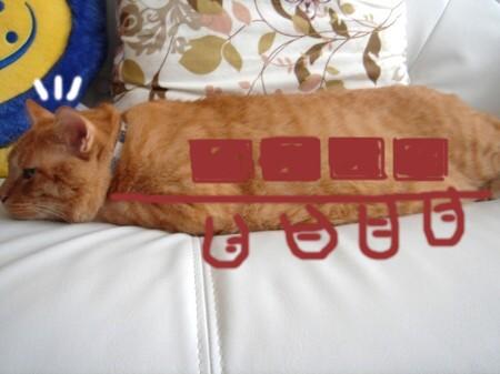 猫バス!? (2)