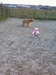 Running_dogs.jpg
