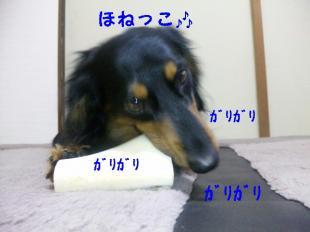骨っこ♪IVE